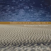 There's No Place Like Ohm Volume 2