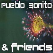 Pueblo Bonito & Friends