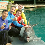 The Wiggles Songtexte, Lyrics und Videos auf Songtexte.com