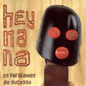 album Hey Na Na by Os Paralamas Do Sucesso