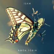 Amon Tobin - One Last Look (Bonus Track)