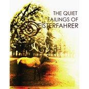 The Quiet Failings of Geisterfahrer