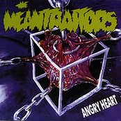 ANGRY HEART -1995