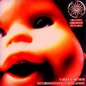 Heterogeneous Compilaion CD2 (Creative Obsession Netlabel)