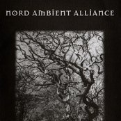 Nord Ambient Alliance