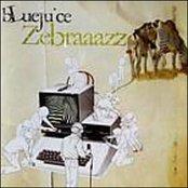 Zebraaazz