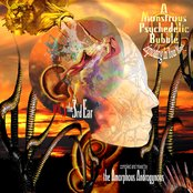 The Amorphous Androgynous-A Monstrous Psychedelic Bubble Vol. 3 The 3rd Ear