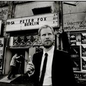 Peter Fox - Schwarz zu blau Songtext und Lyrics auf Songtexte.com