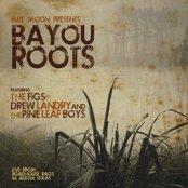 Bayou Roots