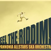 Feel the Riddim