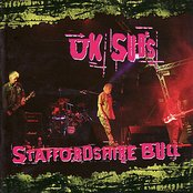 Staffordshire Bull