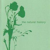 The Natural History