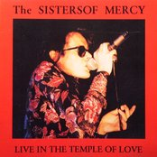 Live in the Temple of Love