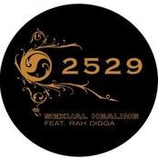 2529 - Sexual Healing