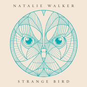 album Strange Bird by Natalie Walker