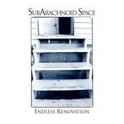 Endless Renovation