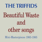 Beautiful Waste and other songs