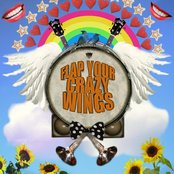 Flap Your Crazy Wings