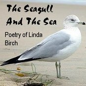 The Seagull And The Sea: Poetry of Linda Birch