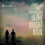 In the Bright Rain