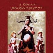 Tribute To Pier Paolo Pasolini
