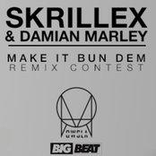 Skrillex & Damian Marley - Make It Bun Dem ( Wikus Remix )
