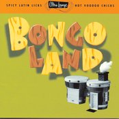 Ultra-Lounge, Vol. 17: Bongoland