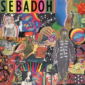 album Smash Your Head on the Punk Rock by Sebadoh