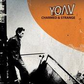 Charmed & Strange