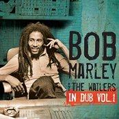 In Dub Vol. 1