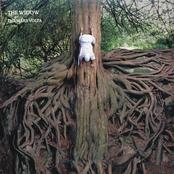 album The Widow by The Mars Volta