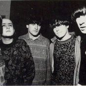 Inspiral Carpets Songtexte, Lyrics und Videos auf Songtexte.com