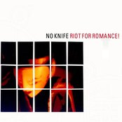 Riot For Romance!