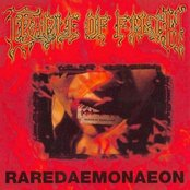 Raredaemonaeon