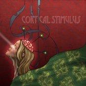 V.A. Cortical Stimulus