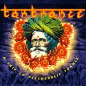 Tantrance 1: A Trip to Psychedelic Trance (disc 2)
