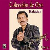 Coleccion De Oro Vol. 2 - Joan Sebastian