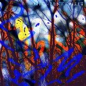 The Silent Ballet: Volume 1