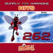 Sunfly Hits: Vol. 262