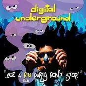 ..Cuz A d.u. Party Don't Stop!