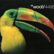 Woob2 (Em:t4495)