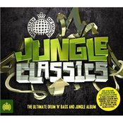 Ministry of Sound: Jungle Classics