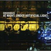 At Night, Under Artificial Light