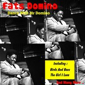 Dance with Mr Domino