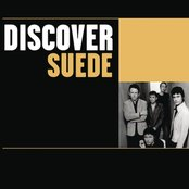 Discover Suede