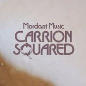 Carrion Squared