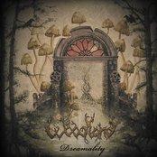 Dreamalitiy