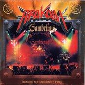 Gambrinus Live
