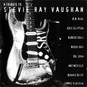"""Afficher """"A Tribute to Stevie Ray Vaughan"""""""