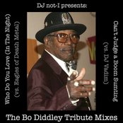 The Diddley Tribute Mixes